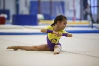 Спортивная гимнастика в Туле 3.12, Фото: 119