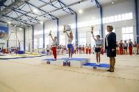 Спортивная гимнастика в Туле 3.12, Фото: 54