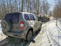 Под Тулой неизвестные сбросили в лесополосе несколько тонн гнилых овощей, Фото: 16