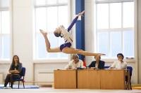 Спортивная гимнастика в Туле 3.12, Фото: 178