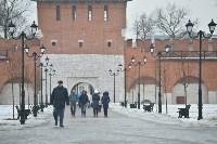 Масленица в Торговых рядах тульского кремля, Фото: 75