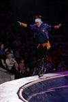 В Тульском цирке прошла премьера аква-шоу, Фото: 25