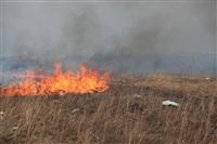 """Возгорание сухой травы напротив ТЦ """"Метро"""", 7.04.2014, Фото: 16"""