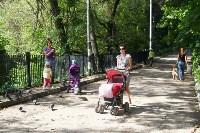 Жители Зеленстроя: Что хотят построить  в Платоновском парке?  , Фото: 18