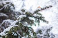 Тула после снегопада. 23.12.2014, Фото: 34
