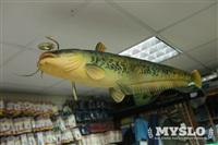 Сом, магазин рыболовных товаров, Фото: 8