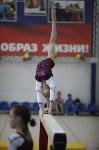Соревнования по спортивной гимнастике на призы Заслуженных мастеров спорта , Фото: 75