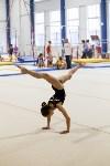 Спортивная гимнастика в Туле 3.12, Фото: 183