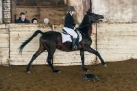 Открытый любительский турнир по конному спорту., Фото: 34