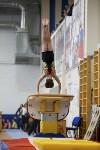 Спортивная гимнастика в Туле 3.12, Фото: 19