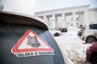 Всероссийская выставка собак 2017, Фото: 75