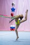 Соревнования по художественной гимнастике 31 марта-1 апреля 2016 года, Фото: 90