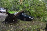 На автомобиль упало дерево, Фото: 3