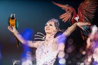 Шоу фонтанов «13 месяцев»: успей увидеть уникальную программу в Тульском цирке, Фото: 42