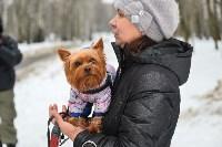 В Комсомольском парке прошёл рейд по выявлению собачников-нарушителей, Фото: 26