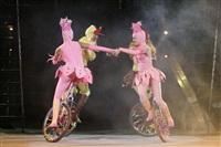 В Тульском цирке прошла премьера аква-шоу, Фото: 21