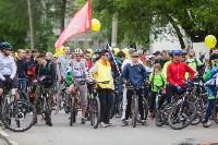 В Туле прошел большой велопарад, Фото: 166