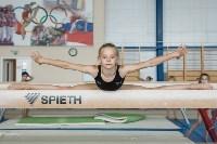 Тренировка гимнасток, Фото: 41