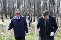 Посадка деревьев в Комсомольском парке, Фото: 45