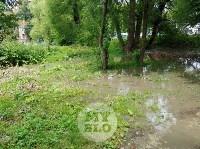 Дворы на Красноармейском проспекте затопило нечистотами, Фото: 9