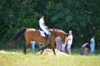 В Ясной поляне стартовал турнир по конному спорту, Фото: 107