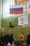 Представительный турнир по греко-римской борьбе. 16 ноября 2013, Фото: 25