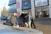 Тульский «СтопХам» проверил парковочные места для инвалидов., Фото: 12