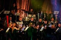 Би-2 с симфоническим оркестром в Туле, Фото: 40