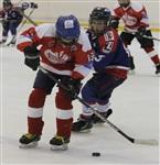 Международный детский хоккейный турнир. 15 мая 2014, Фото: 52