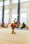 Спортивная гимнастика в Туле 3.12, Фото: 98
