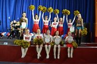Открытый Чемпионат Тульской области по черлидингу, Фото: 71