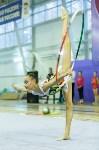 Кубок общества «Авангард» по художественной гимнастики, Фото: 35