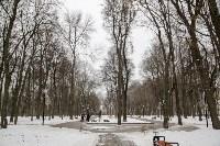 Рогожинский парк, зима 2019, Фото: 15