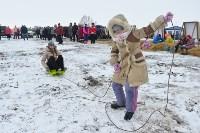 Праздник северных собак на Куликовом поле , Фото: 103