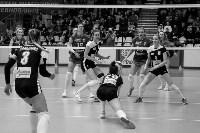 Кубок губернатора по волейболу: финальная игра, Фото: 54