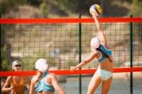 Пляжный волейбол в Барсуках, Фото: 84