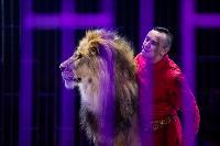 Шоу фонтанов «13 месяцев»: успей увидеть уникальную программу в Тульском цирке, Фото: 228