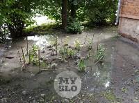 Дворы на Красноармейском проспекте затопило нечистотами, Фото: 26