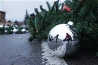 Установка новогодней елки на площади Ленина, Фото: 4