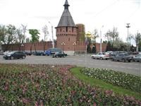 В Туле ко Дню Победы высадили 88, 5 тысяч цветов, Фото: 5