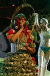 В Тульском цирке прошла премьера аква-шоу, Фото: 5