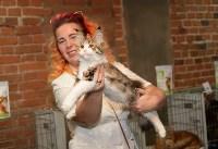 Выставка кошек в Искре, Фото: 42