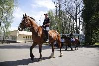 Конный патруль в Туле, Фото: 2