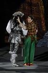 В Тульском цирке прошла премьера аква-шоу, Фото: 44