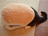 Котамбургер, Фото: 4