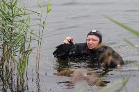 В Туле спасли лебедя с одним крылом, Фото: 11