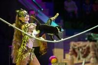 """""""Тайна пирата"""" в Тульском цирке, Фото: 4"""