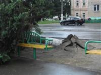 Ураган в Плавске, Фото: 3