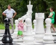 """""""Большие шахматы"""" в Центральном парке, Фото: 51"""