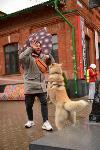 В Туле состоялся автомобильный фестиваль «Пушка», Фото: 60